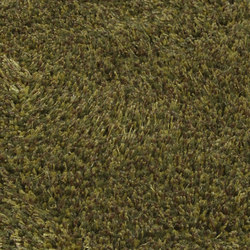 Roots 34 fir green | Rugs | Miinu