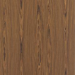 ALPIkord Santos Rosewood 50.54 | Wand Laminate | Alpi