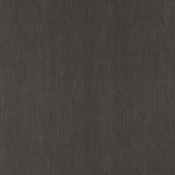 ALPIkord Smoke Grey Oak 50.66 | Wall laminates | Alpi