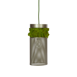Moss Hanging lamp | General lighting | Verde Profilo