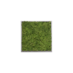 Moss painting S Picture | Decoración de pared | Verde Profilo