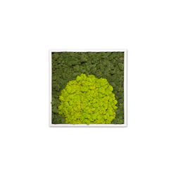 Moss painting S Picture | Wall decoration | Verde Profilo