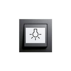E2 | Schalter abtastbar | Push-button switches | Gira