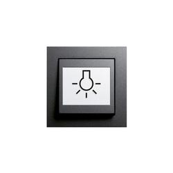 E2 | Schalter abtastbar | Interruptores pulsadores | Gira
