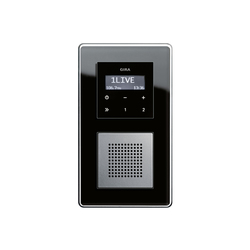 Esprit Glass C | RDS flush-mounted radio | Radio systems | Gira