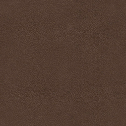 Magic Pelle 700 | Artificial leather | Saum & Viebahn