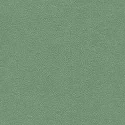 Magic Pelle 400 | Upholstery fabrics | Saum & Viebahn