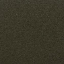 Feltro Color 70040 | Alfombras / Alfombras de diseño | Ruckstuhl