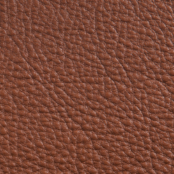 Elmorustical 33286 | Natural leather | Elmo Leather