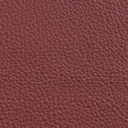 Elmorustical 53069 | Natural leather | Elmo Leather