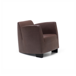 DS 2620 SeNa | Lounge chairs | de Sede