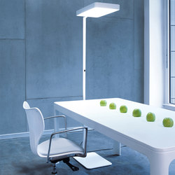 Caleo S1/S2 | Free-standing lights | Lightnet