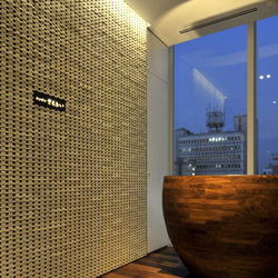 Porous model 1 wall in-situ |  | Kenzan