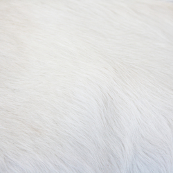 Cowhide | Rugs | KURTH Manufaktur