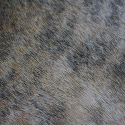 Cowhide | Tapis / Tapis design | KURTH Manufaktur