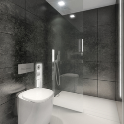 BUILT IN toilet/shower black | Shower screens | AMOS DESIGN