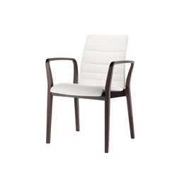 fina Wood 6822/A | Restaurant chairs | Brunner
