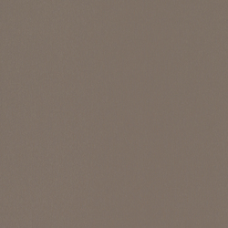 skai Techprofil Metbrush mocca | Fassadenfolien | Hornschuch