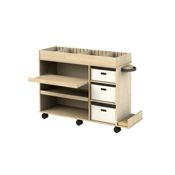 Trolley OTSTVT | Kids storage | Woodi