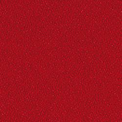 Crep 0070 | Telas | Carpet Concept