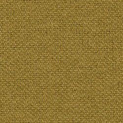 Dubl 0024 | Drapery fabrics | Carpet Concept