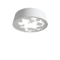 Glänta Mini ceiling | General lighting | Blond Belysning