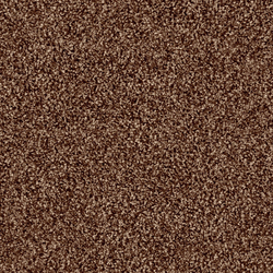 Glory 1507 Teddy | Formatteppiche | OBJECT CARPET