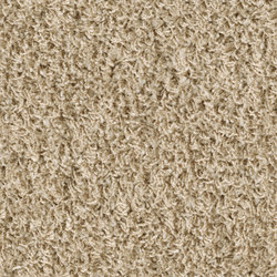 Poodle 1406 | Tapis / Tapis design | OBJECT CARPET