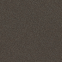 Scor 0569 Dark Brown | Wall-to-wall carpets | OBJECT CARPET