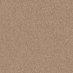 Silky Seal 1214 Crema | Rugs | OBJECT CARPET
