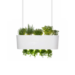 Orto Volante Suspension lamp | General lighting | Verde Profilo