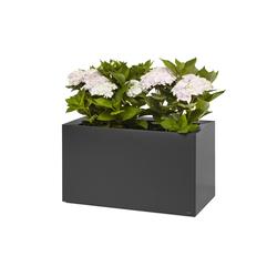 Thallo | Bacs à fleurs / Jardinières | FLORA