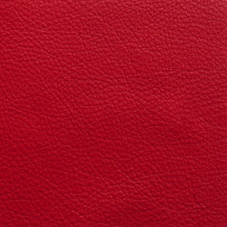 Elmosoft 55002 | Cuir | Elmo Leather
