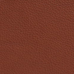 Elmobaltique 33441 | Natural leather | Elmo