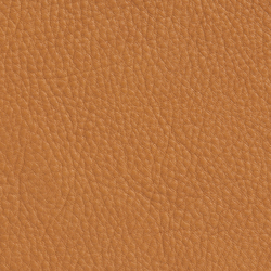 Elmobaltique 43001 | Natural leather | Elmo