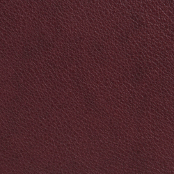 Elmobaltique 95442 | Natural leather | Elmo