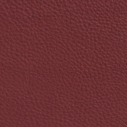 Elmobaltique 95052 | Natural leather | Elmo
