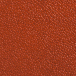 Elmobaltique 53001 | Natural leather | Elmo