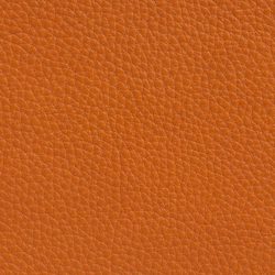 Elmobaltique 43003 | Natural leather | Elmo