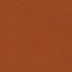 Elmotique 43807 | Natural leather | Elmo
