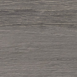 Grigio Tortora WY 04 | Ceramic tiles | Mirage