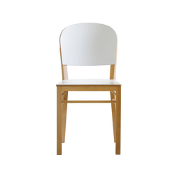 Aloe chair | Restaurant chairs | Billiani