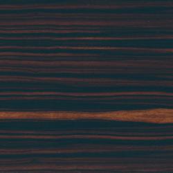 Le Essenze di Rex Ebano | Floor tiles | Rex Ceramiche Artistiche by Florim