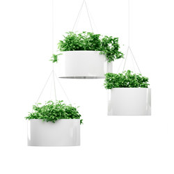 Green Cloud hanging | Plant holders / Plant stands | Systemtronic