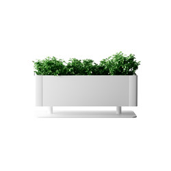Green Light T table | Plant pots | Systemtronic