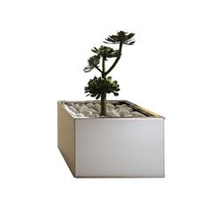 Lingo | Fioriere / vasi per piante | Tonelli