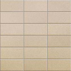 Anthologhia Gelsomino | Mosaics | Appiani