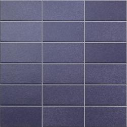 Anthologhia Anemone | Mosaics | Appiani