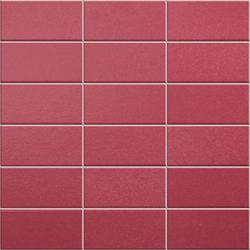 Anthologhia Rosa | Mosaicos | Appiani