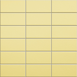 Anthologhia Forsizia | Keramik Mosaike | Appiani